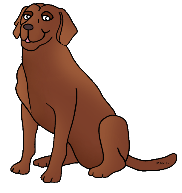 Dogs vector chesapeake bay retriever. Free cliparts download clip