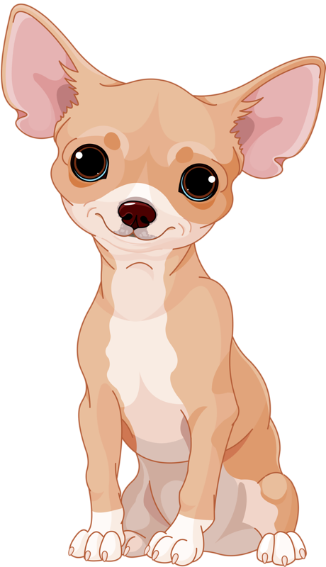 Dogs vector chihuahua. Content png pinterest drawings