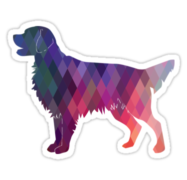 Dogs vector geometric. Flat coated retriever and