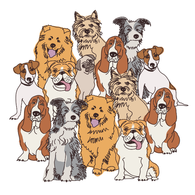 Dogs vector group. Reader question why is