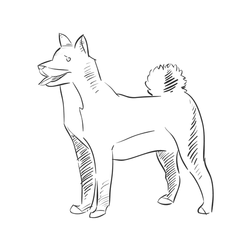 Dogs vector hand drawn. Dog transparent png svg