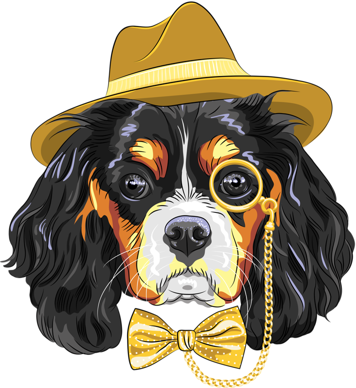 Dogs vector hipster. Content png cavalier king