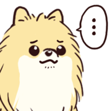 Dogs vector pomeranian. Lovely brings phrases which