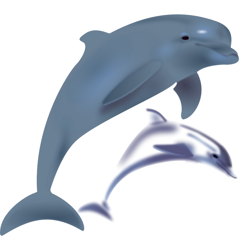 Dolphin clipart comic. Free pictures of a