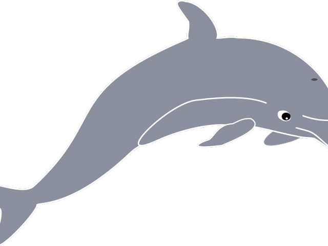 Dolphin clipart dolphin tail. Download spinner png image