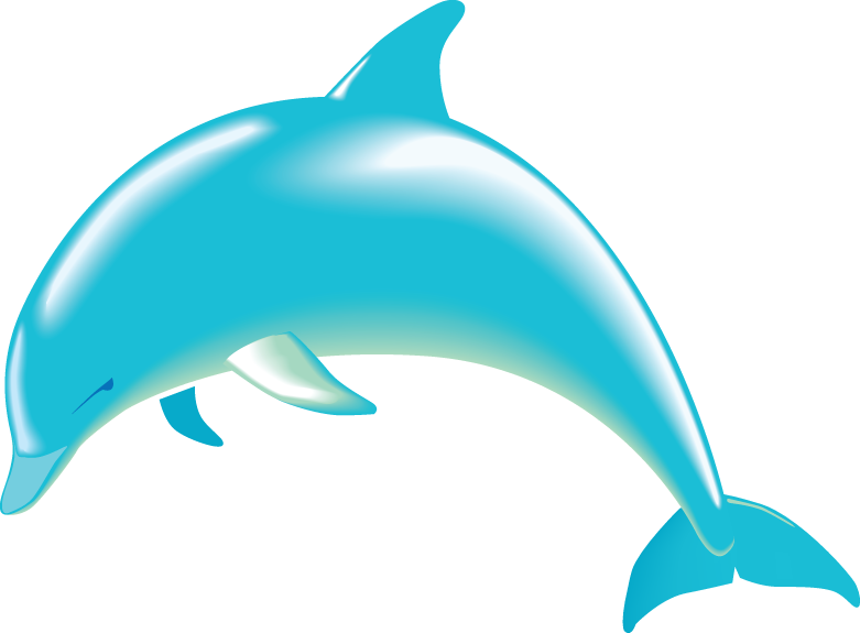 porpoise drawing dolphin