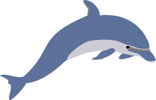 Dolphin clipart dolphin tail. Cute panda free images