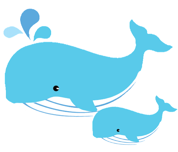 Transparent whale svg. Baby dolphin clipart at