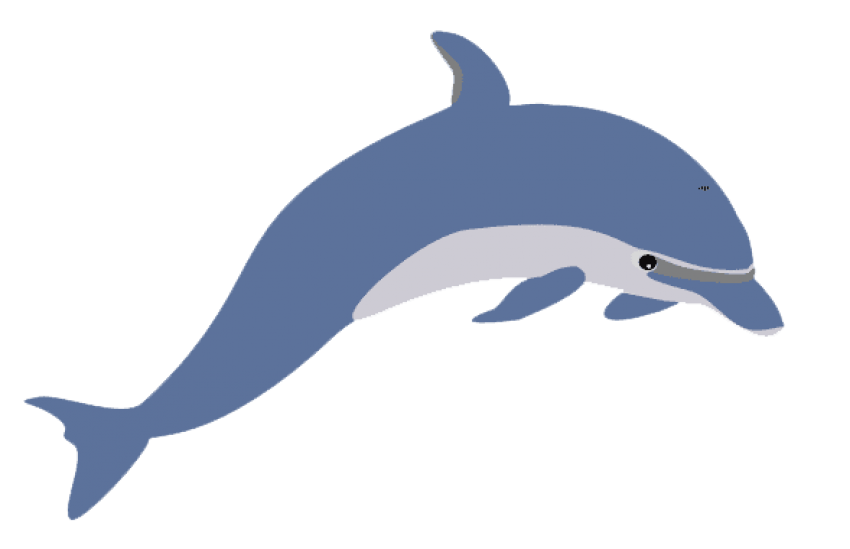 Cute dolphin png. Clipart free images toppng