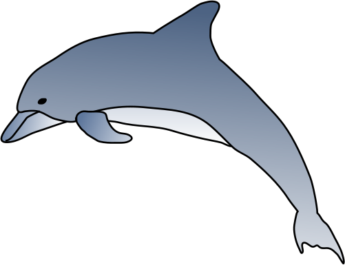Porpoise drawing bottle nose dolphin. Free spinner cliparts download