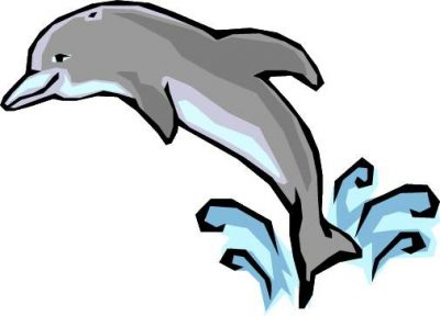Dolphin clipart real dolphin. Baby at getdrawings com