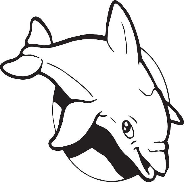 Dolphin clipart sad. Facts for kids cool