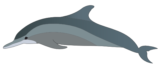 Dolphin clipart shark. Free minion cliparts download