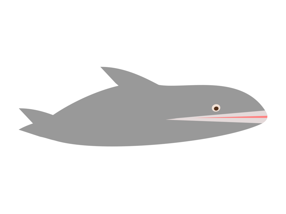 Dolphin clipart shark. Porpoise cetacea donuts free