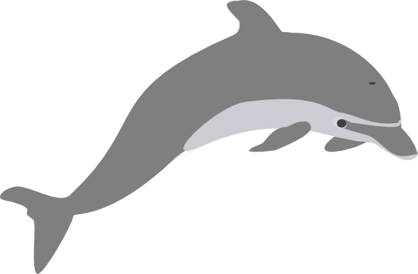 porpoise drawing baby