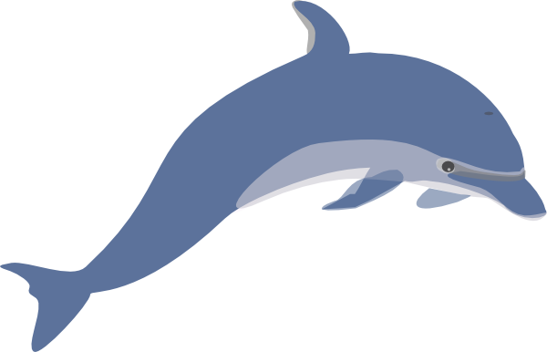 Drawing seahorse anime. Dolphins moving clipart