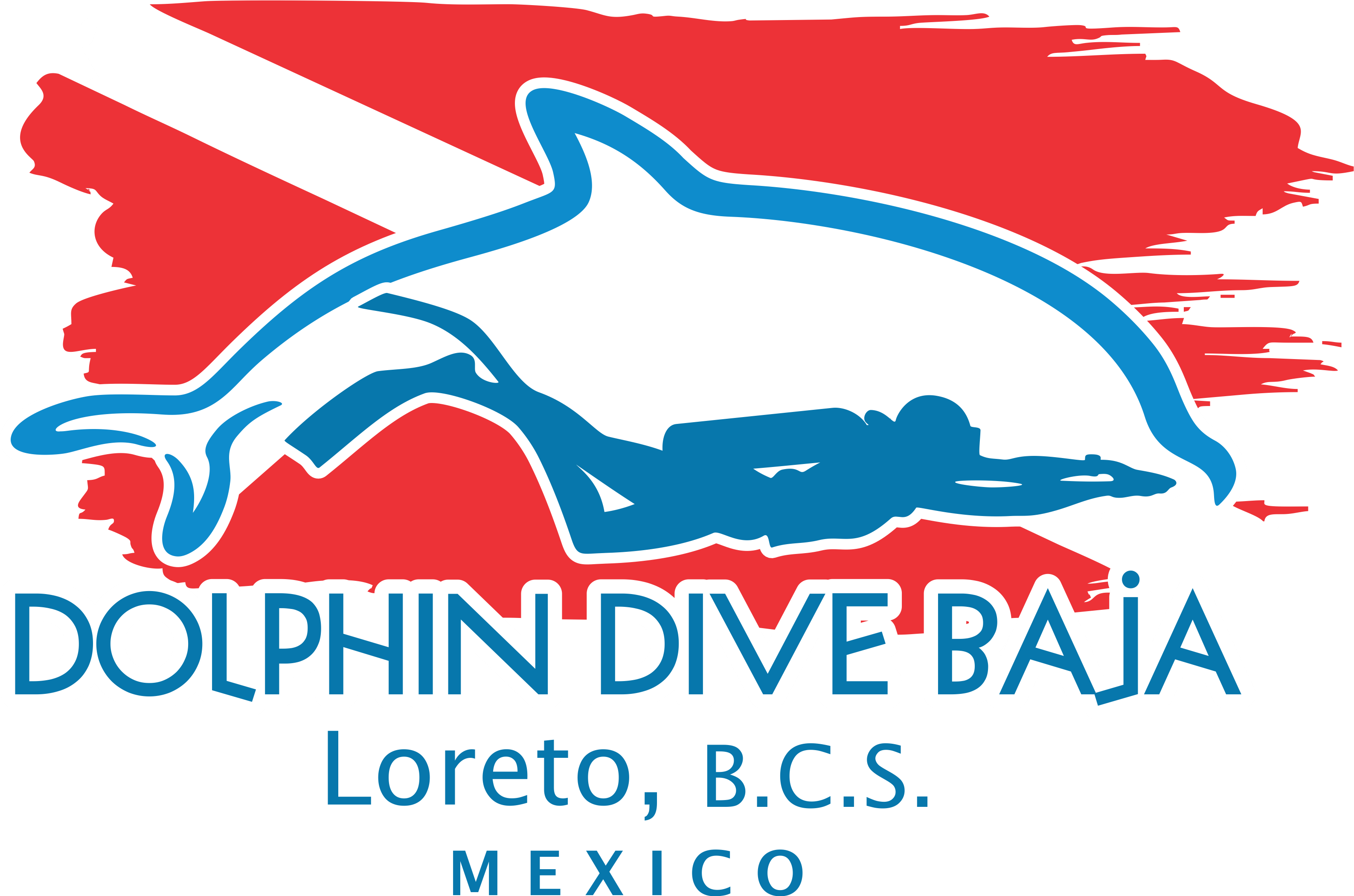 Dolphins clipart dolphin diving. Loreto mexico home dive