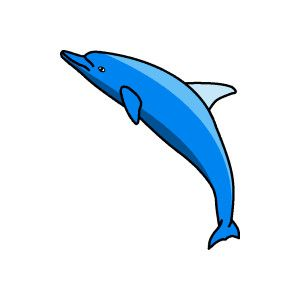 Dolphins clipart dolphin diving. Free graphics swimming