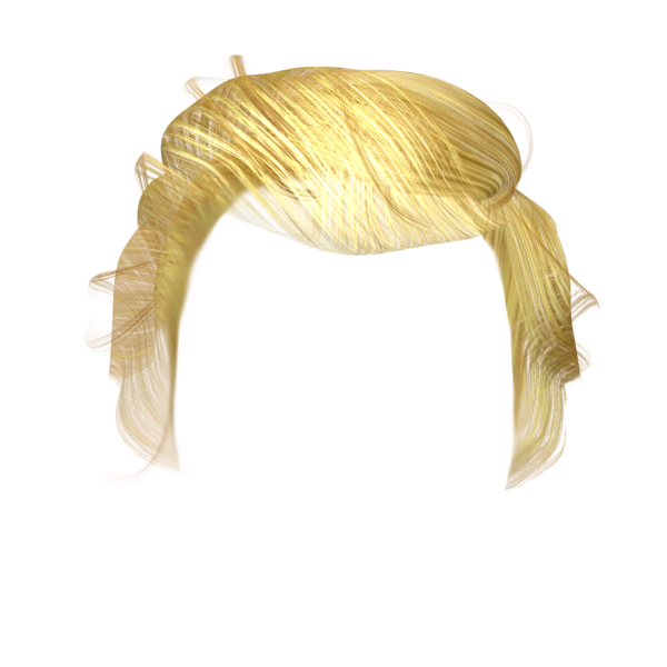 Hair . Trump wig png image royalty free stock