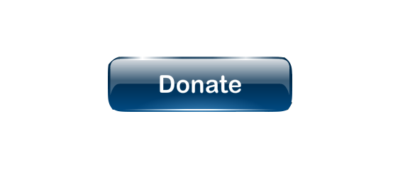 Donate button png. Travel the road dontatepng