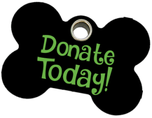 Donatetoday x png donate. Donation clipart animal rescue free stock