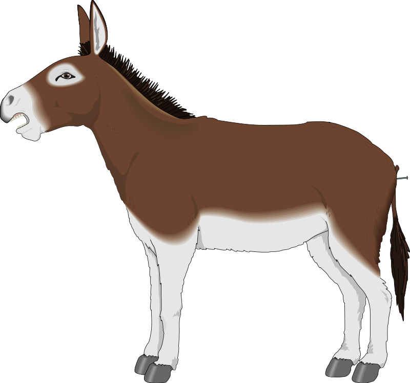 Mule clipart printable. Free donkey images download
