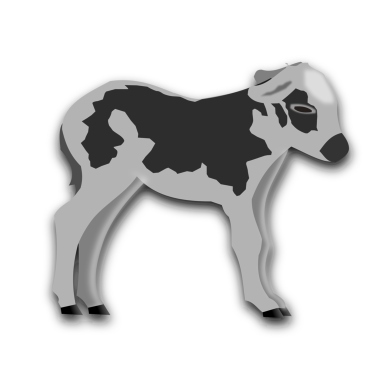 Cattle vector cow calf. Operation milk free commercial