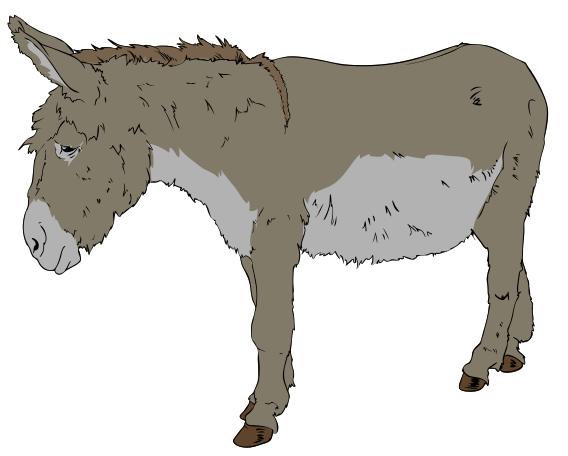 Donkey clipart foal. File svg wikimedia commons