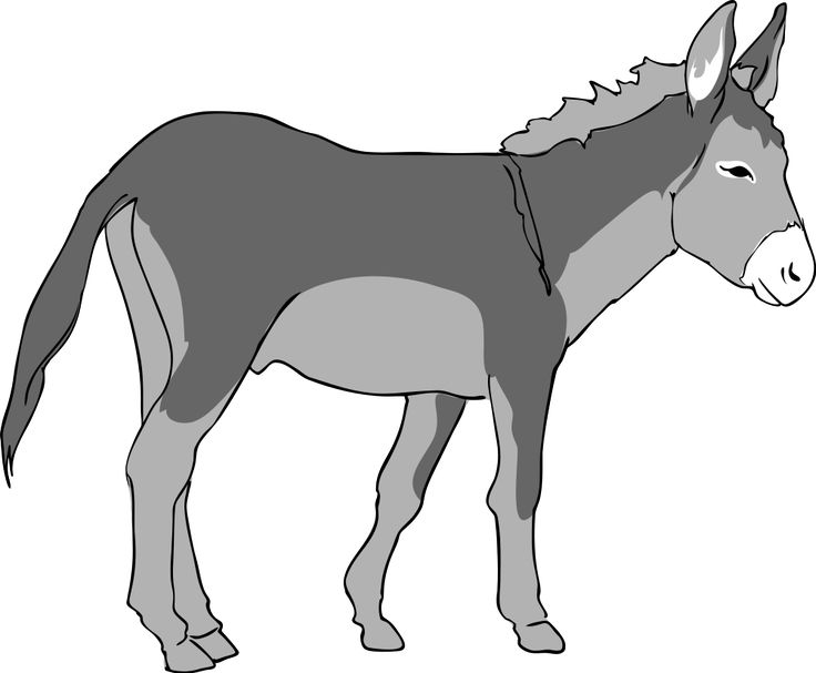 Mule clipart black and white. The best donkeys images