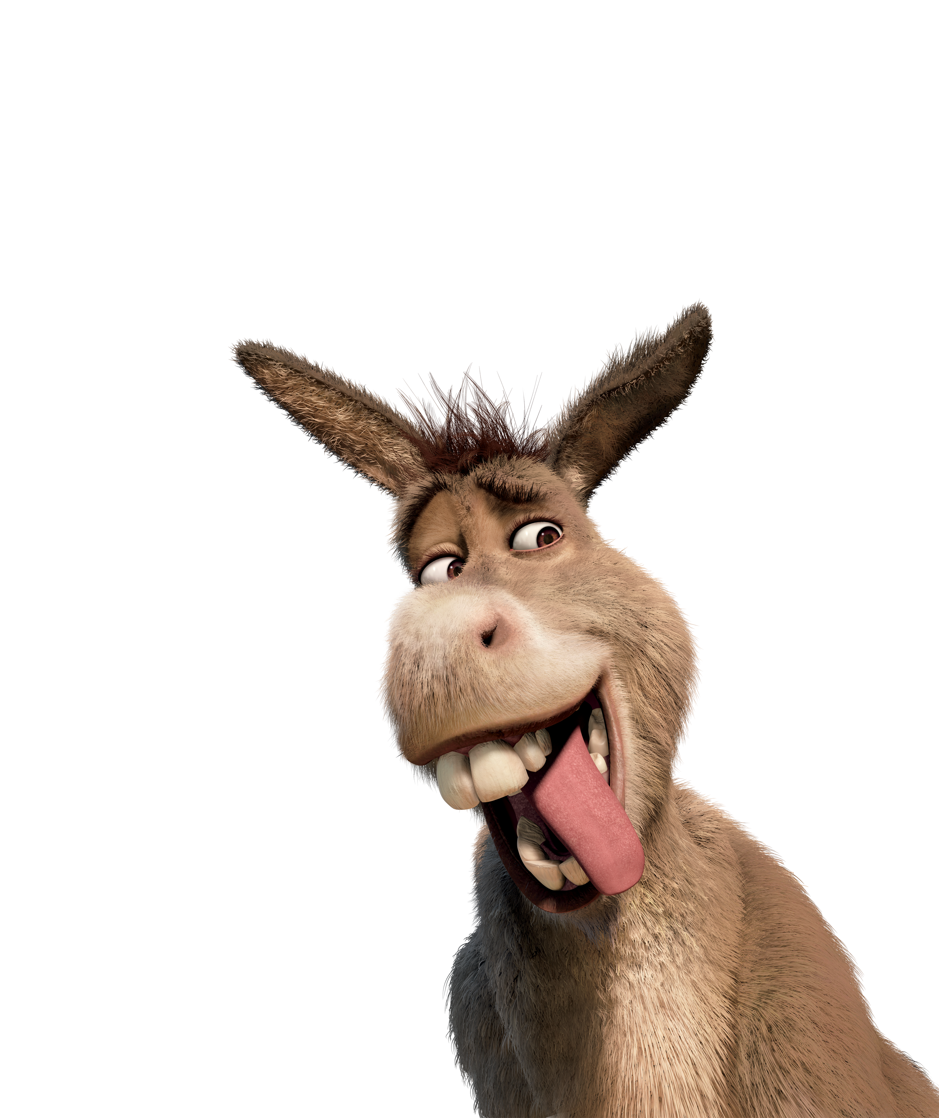 Donkey shrek head png. They re making a