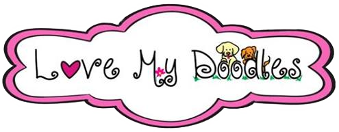 Doodle clipart golden doodle. Goldendoodle puppy prices by