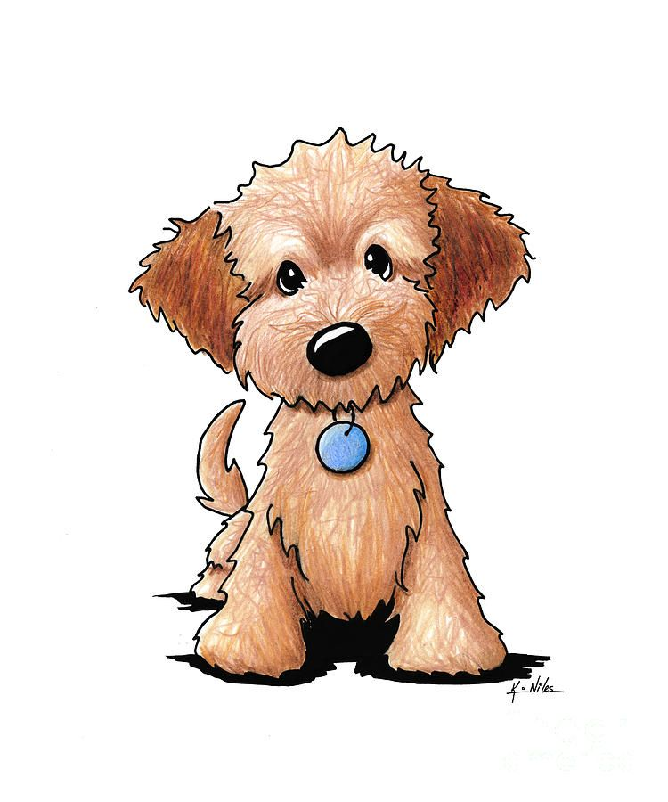 Doodle clipart golden doodle. Goldendoodle puppy drawing by