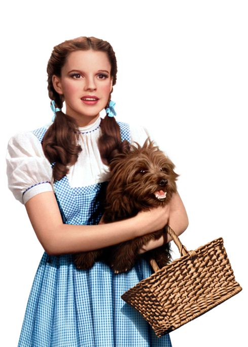 Dorothy wizard of oz png. Toto the pinterest gale