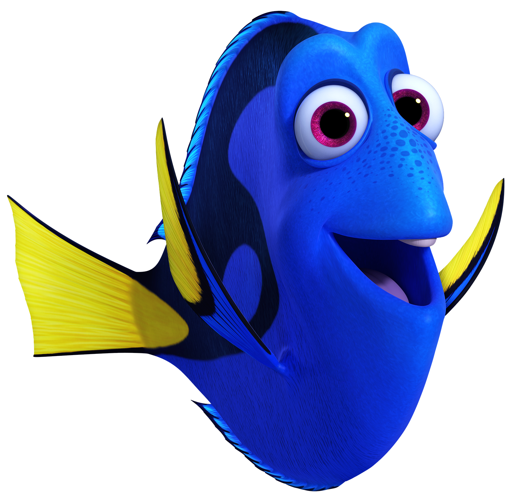 dory high resolution png