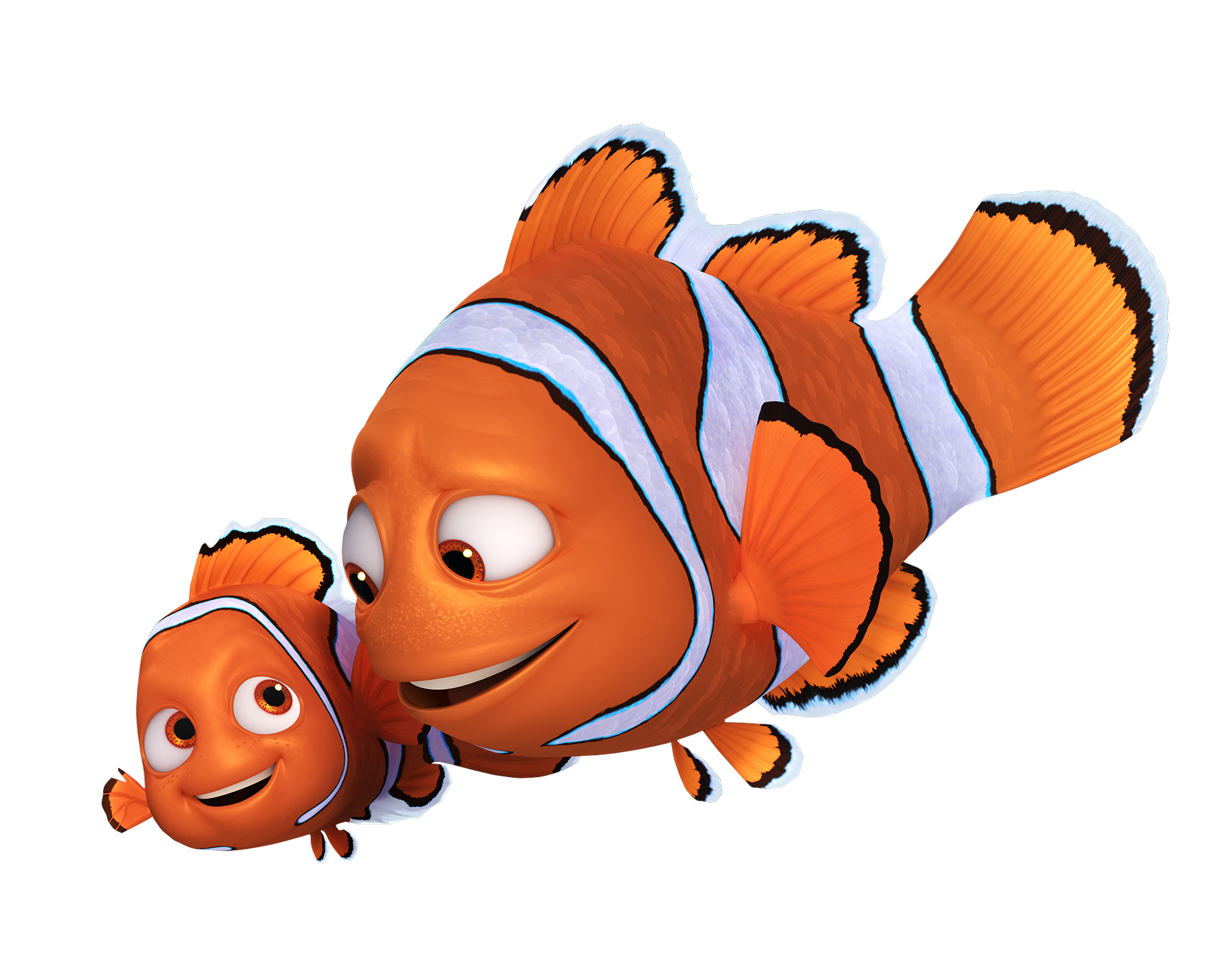 Dory y nemo png. Image and marlin in