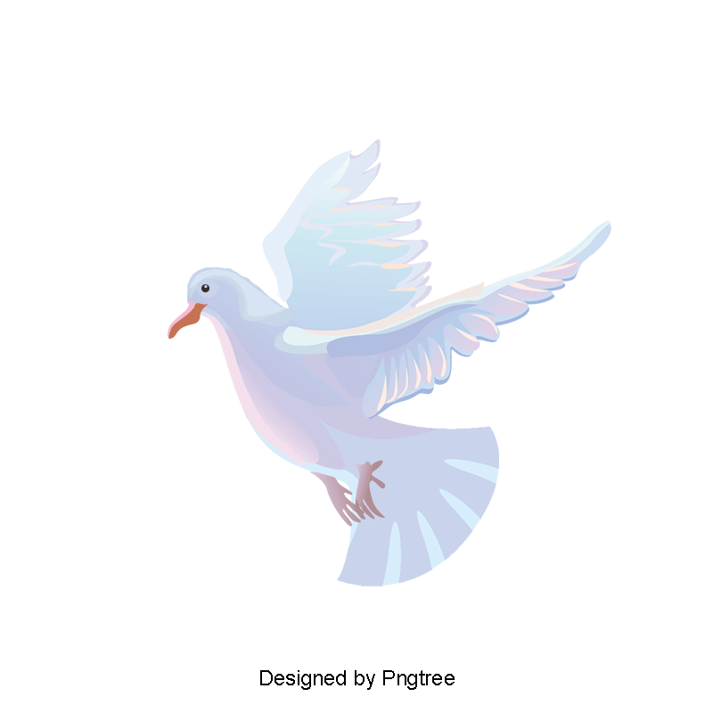 Vector doves peace pigeon. A white dove material