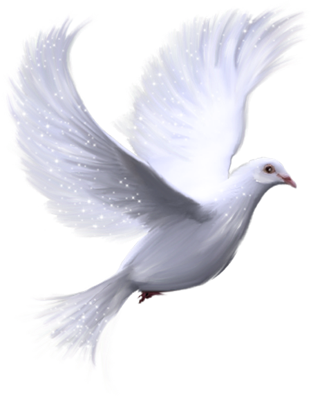 Holy spirit dove png. Cliparts email this blogthis