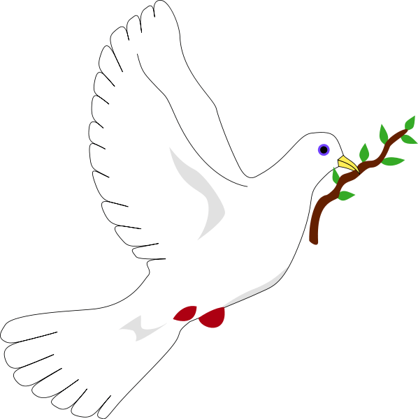 dove with olive branch png