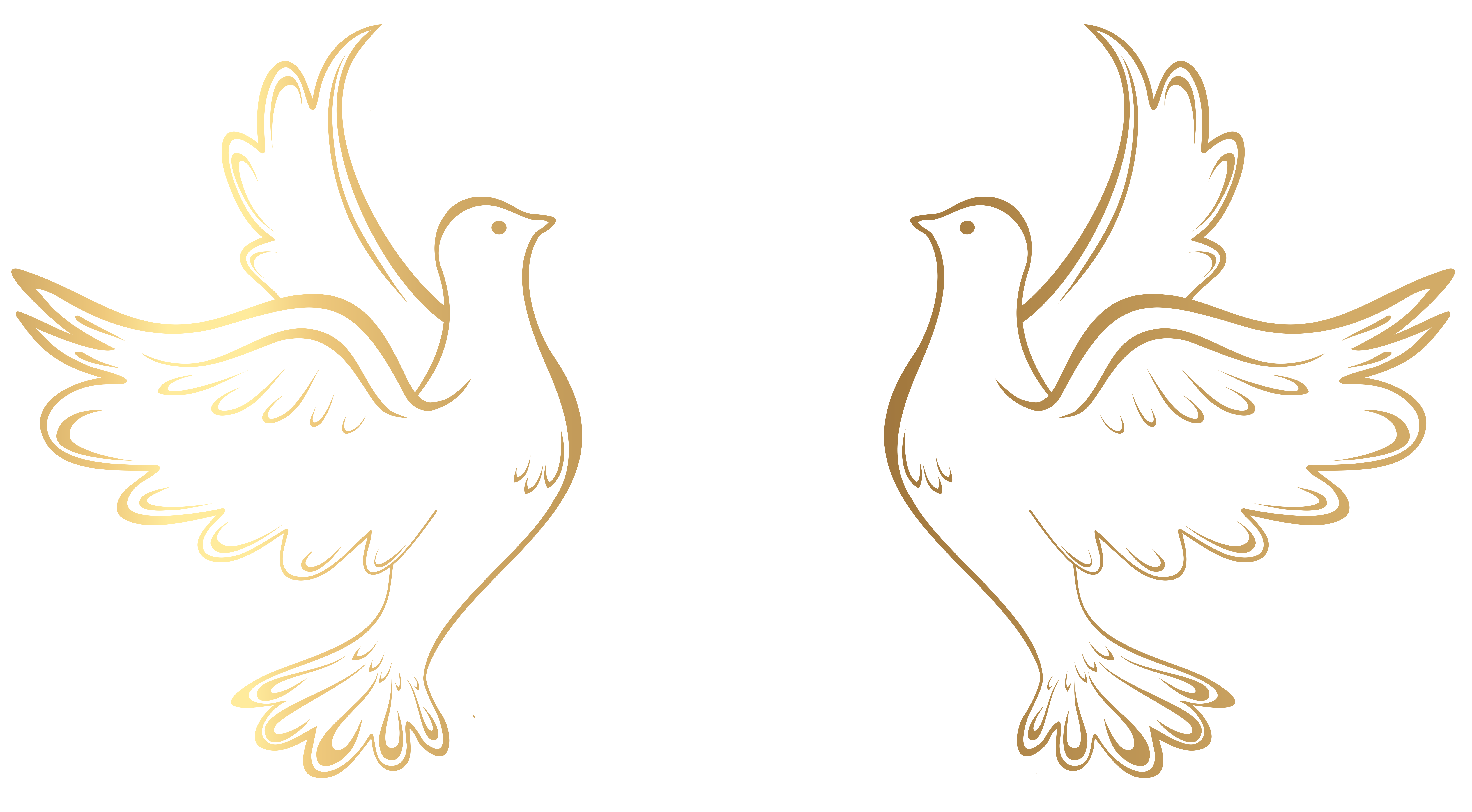 love doves png