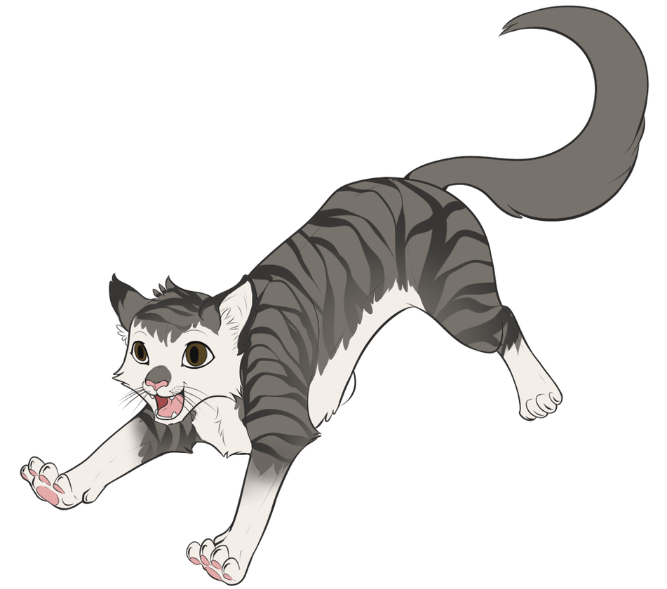 Dragoart drawing tail. Cartoon cat by on