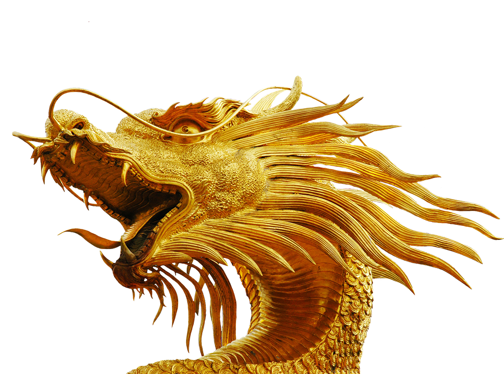 Dragon head png. Free clip art with
