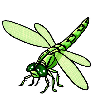 Dragonfly clipart.  free clip art clipart black and white