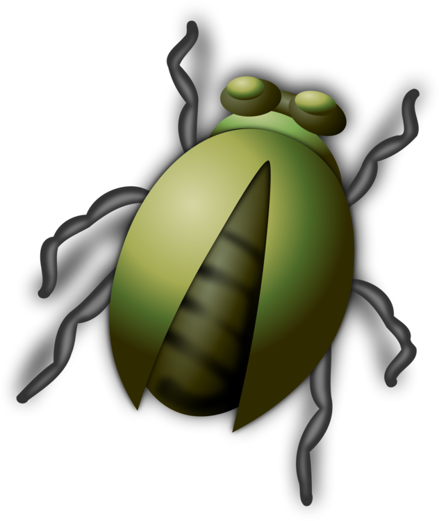 Firefly insect png. Drawing can stock photo
