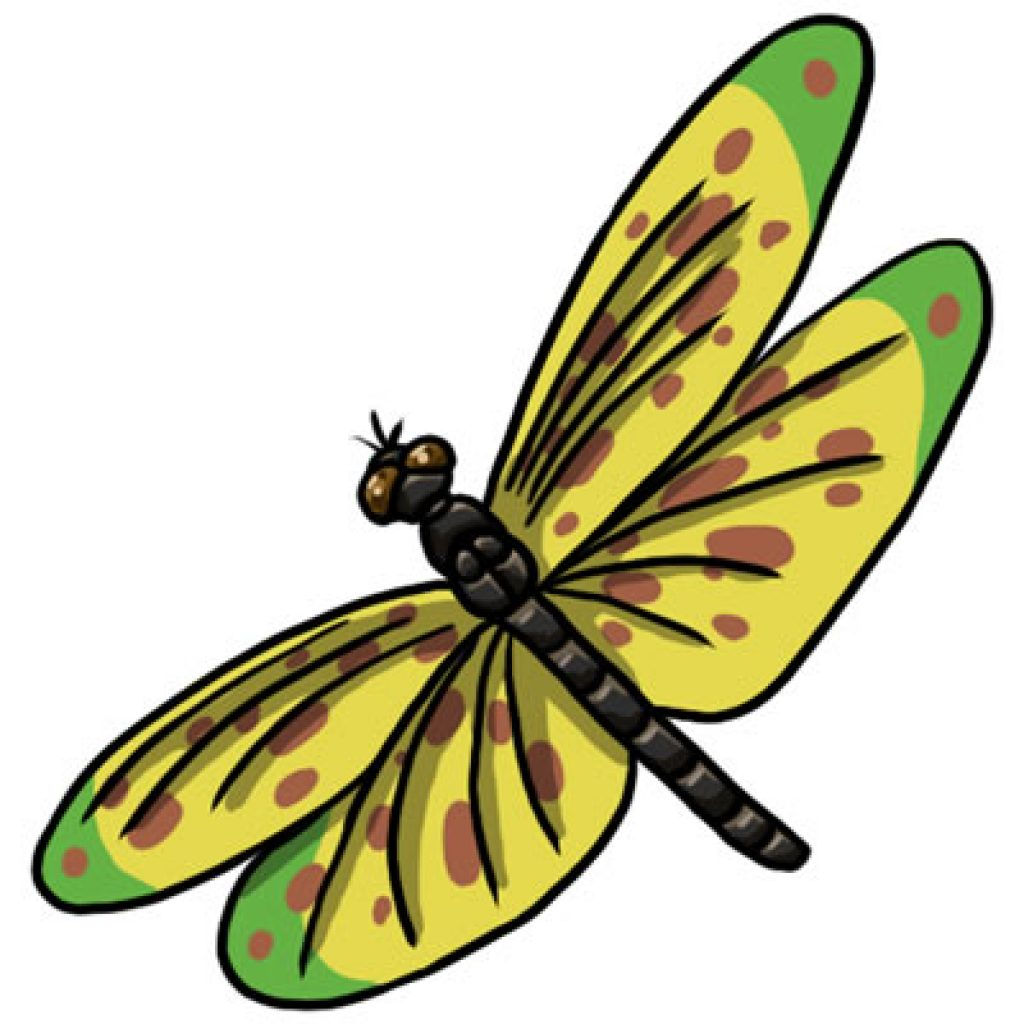 Dragonfly clipart summer. Baby hatenylo com free