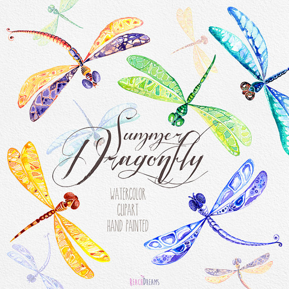 Dragonfly clipart summer. Watercolor hand painted digital