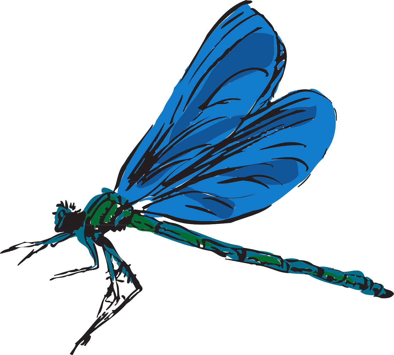 Dragonfly transparent big blue. Jpg free library