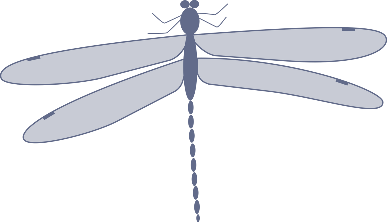 Dragonfly transparent flower drawing. Damselflies insect computer icons