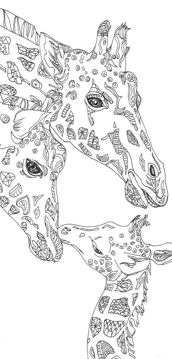 Draw clipart colouring page. Coloring pages giraffe printable