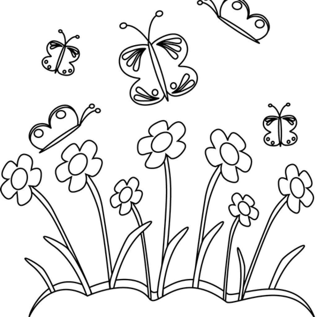 Drawing alphabets flower. Butterfly on graphic black