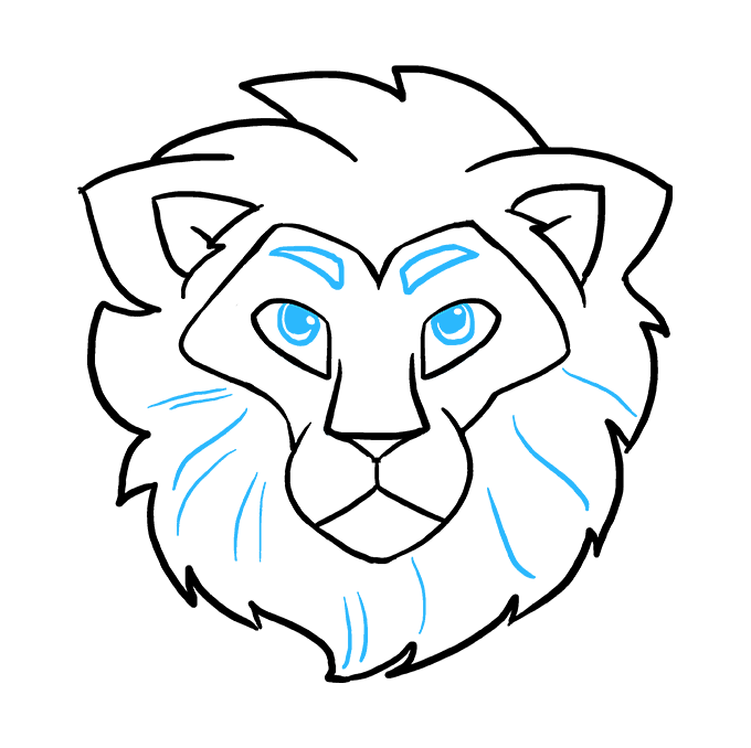 Drawing lions directed. Lion face easy ncoast
